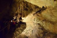 Camuy Cavern Tour