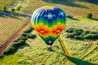 Wine Country Hot Air Balloon