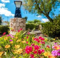 Catrineta Garden