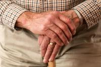 Seniors Rate